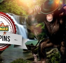 Mr_Green_Go_Bananas_Slot_Freispiele